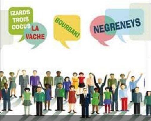 Le conseil citoyen des quartiers Toulouse Nord